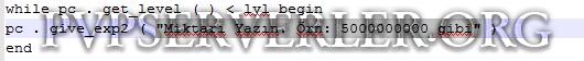 metin2 pvp başlangıç : item ayarları