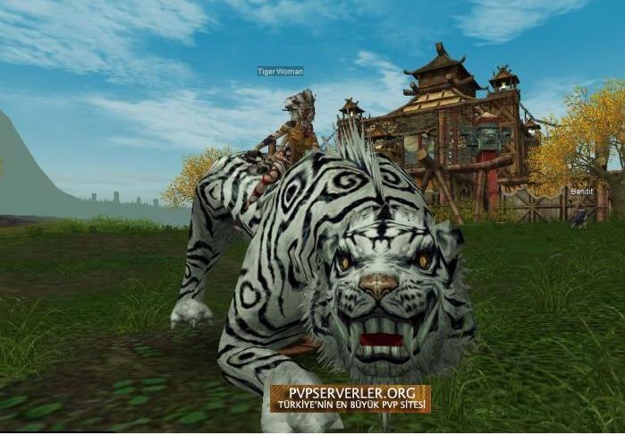 Silkroad online tiger girl